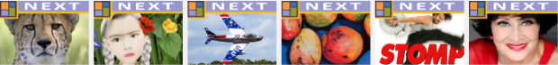 Facebook pay-per-click Ad Design / Cultural Marketing - Brevard Florida