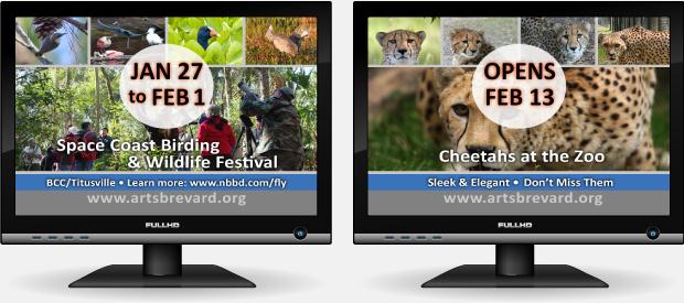 Television Ad Development  / Cultural Marketing - Brevard Zoo