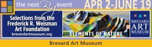 Elements of Nature Brevard Art Museum