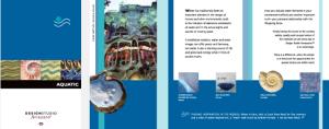 Portfolio Ferrazzano Brochure Aquatic