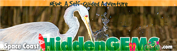 Space Coast Hidden Gems Digital Billboard Creative campaign sample 4