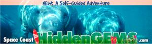 Space Coast Hidden Gems Digital Billboard Creative campaign sample 5