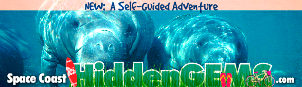 Space Coast Hidden Gems Digital Billboard Creative campaign sample 5